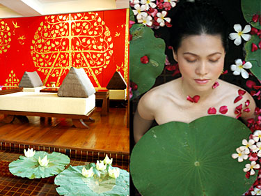�����Х󥳥����ѥ��������ܸ�ͽ��:Samsara Wellness Center ���ॵ�顦������ͥ������󥿡�