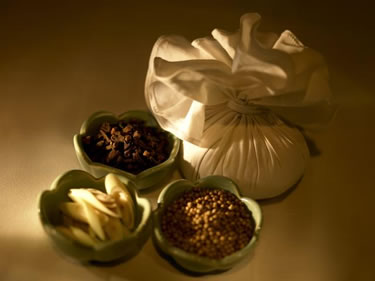 �����Х󥳥����ѥ��������ܸ�ͽ��:Banyan Tree Spa Bangkok �Х���ĥ꡼�����ѡ��Х󥳥�